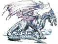 005-beyaz-ejderha