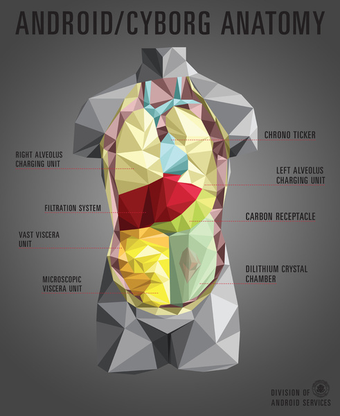 android-cyborg-anatomy