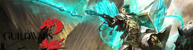 guild-wars-2-banner-2012