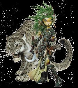 Pathfinder Dice Arena karakteri