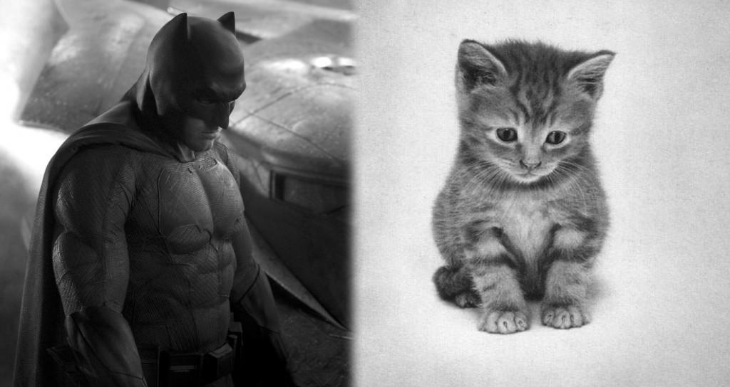 batman-kedi