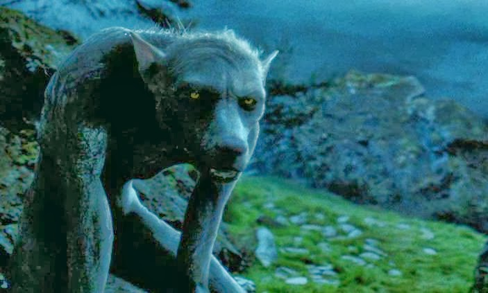 harry-potter-werewolf