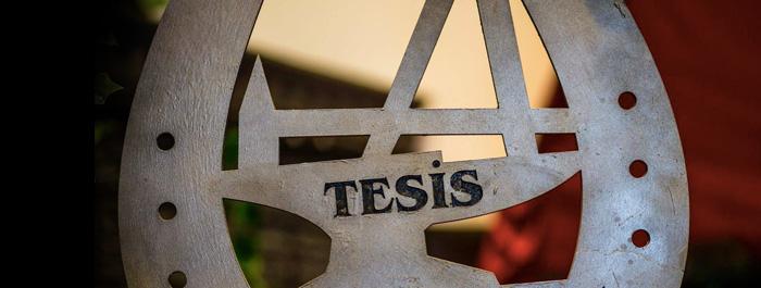 tesis-banner