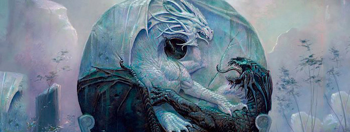 the-summer-dragon-banner