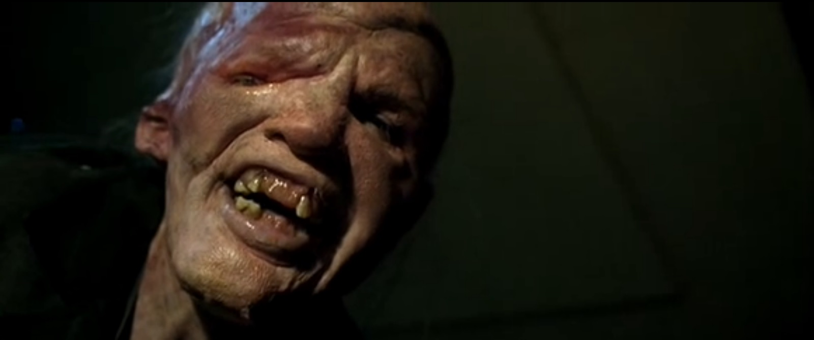 the hills have eyes essay Horror movies are notorious for their teases, whether the trailer or even the tagline we look back and give you the 19 best horror movie the hills have eyes wes.